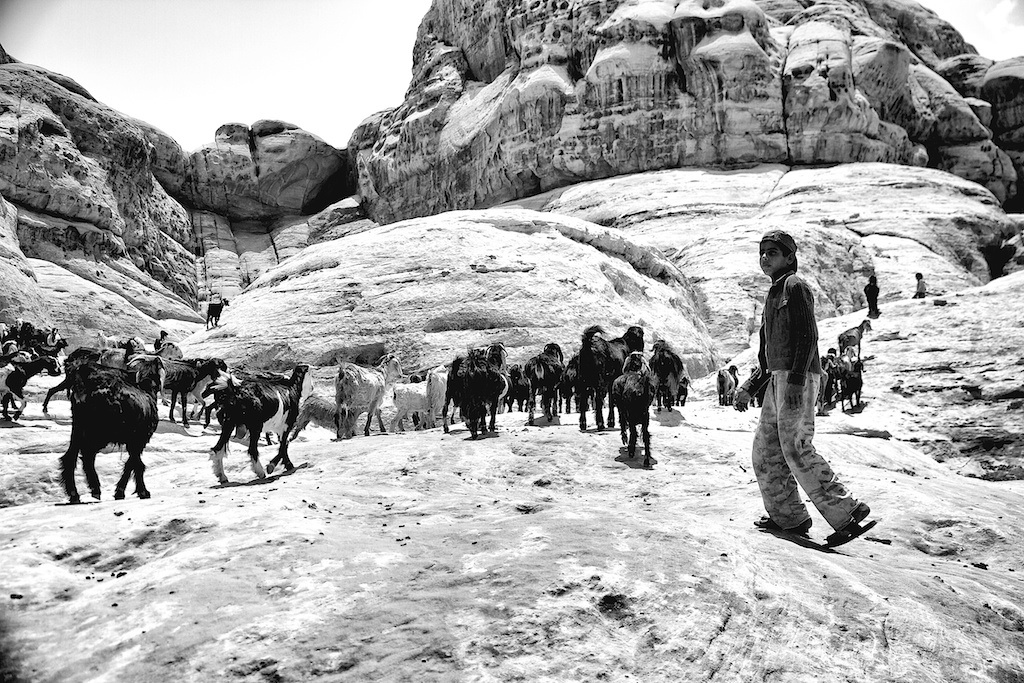 Life of Bedouins Study 6