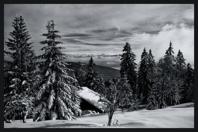 Vue Des Alps-study 1