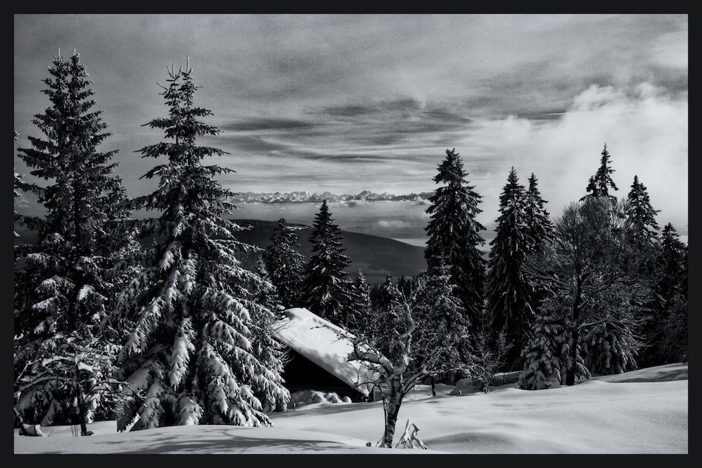 Vue Des Alps-study 1 (1)