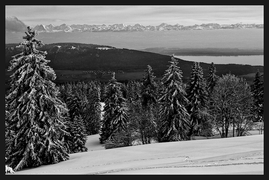 Vue Des Alps-study 3