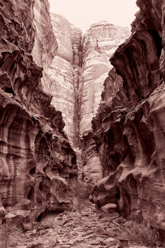 Wadi Rum Study 8