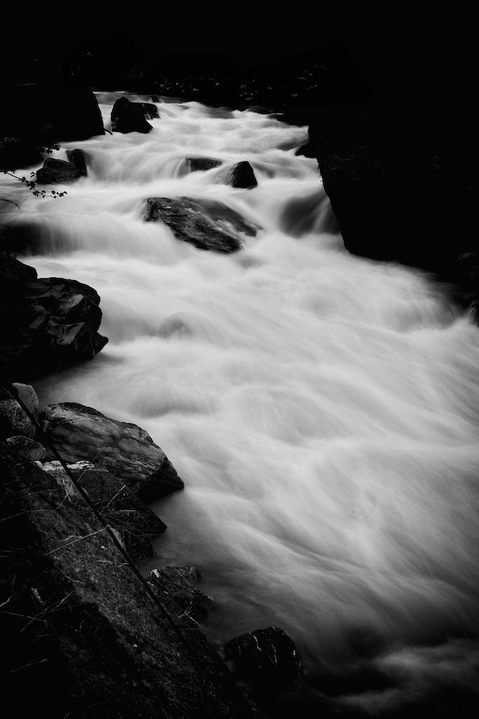 Water-Study 4 web