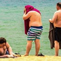 Three Hamburgers on the beach