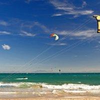 Kite Race (P2)