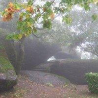 Mist in Amarante