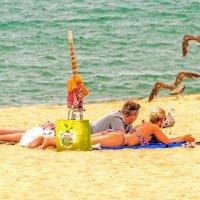 Tourists feeding seagulls