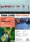 Free Choice (November 2019)