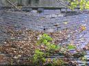 Autumn Roof in Beara