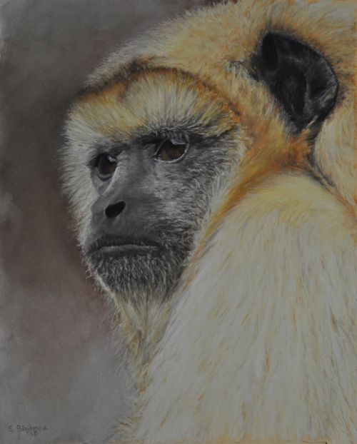 Contemplation  (Sold)
