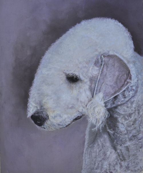 Bedlington Terrier (SOLD)