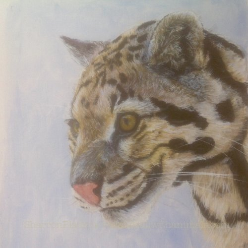Clouded Leopard (SOLD)