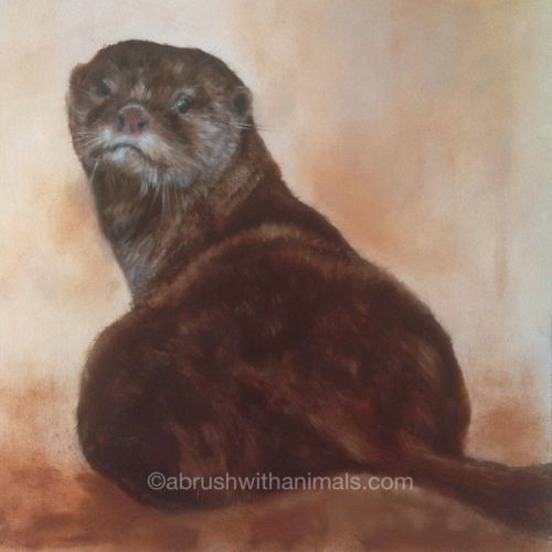 Looking Back (Otter) (SOLD)