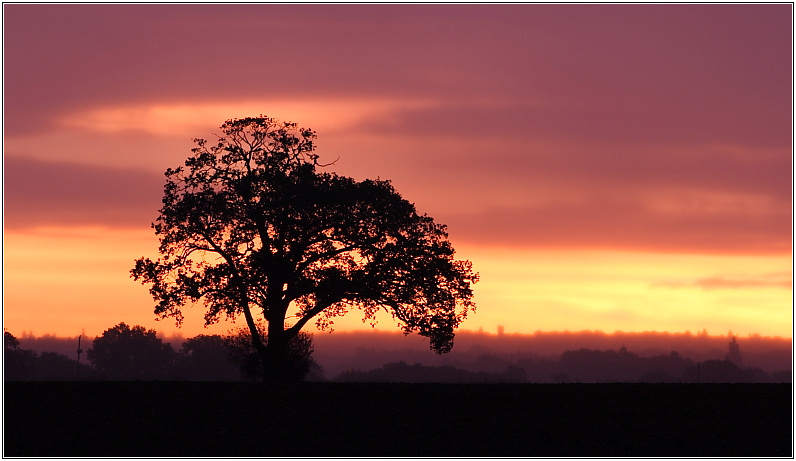 Elstead Sunrise, May 2006