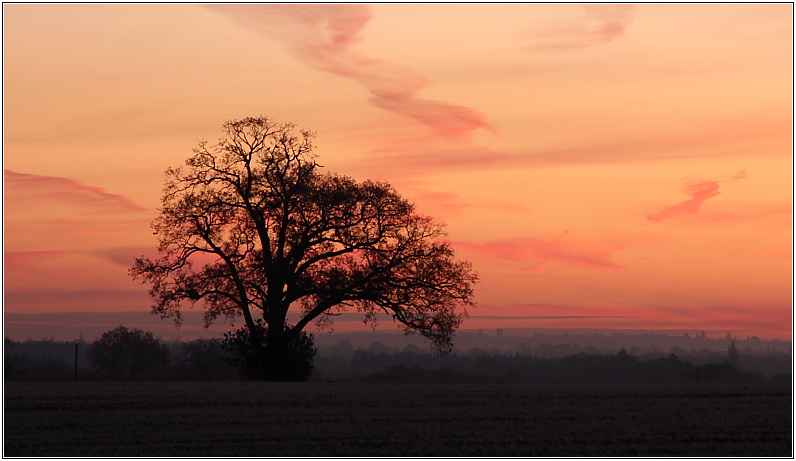 Elstead Sunrise, November 2007
