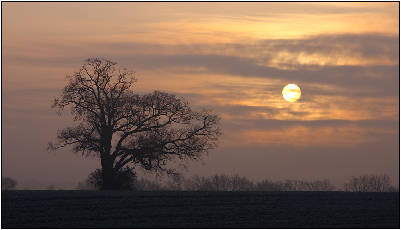 Elstead Sunrise, Winter Solstice 2007