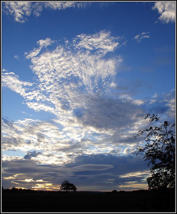 Autumn Skies II