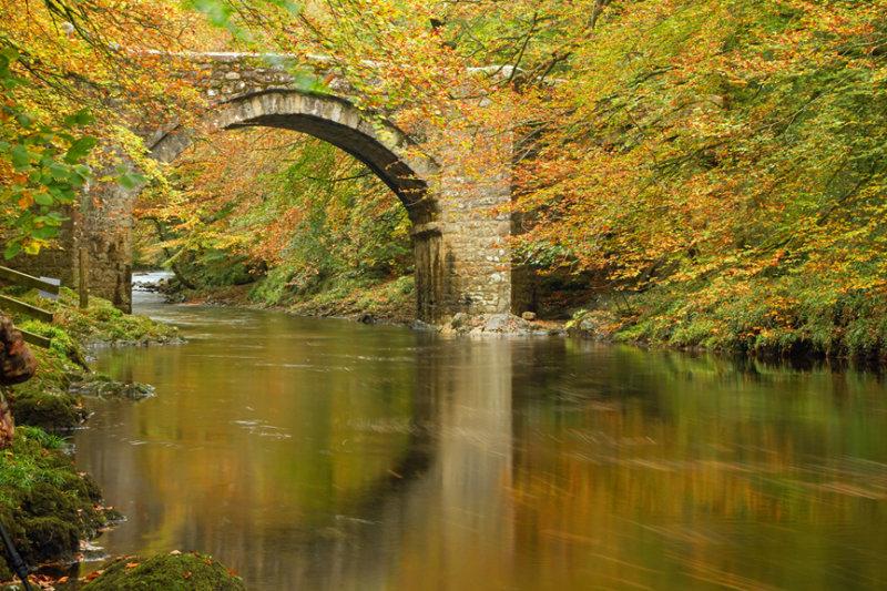Bridge of Colour