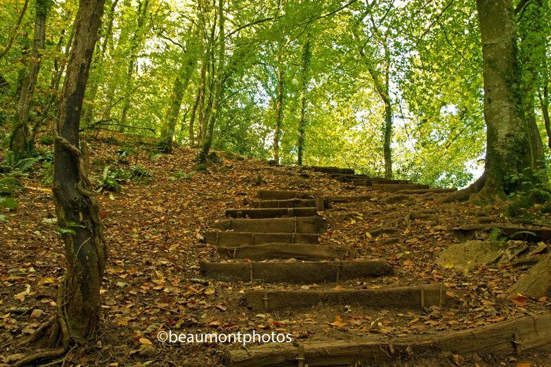 Climbing up to Autumn