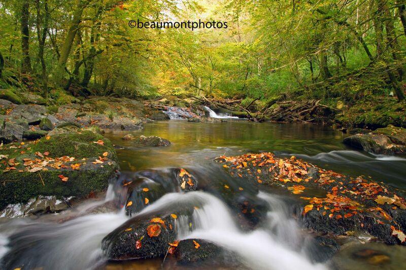 River Erme