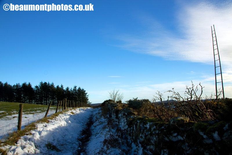 Snow Laiden Path