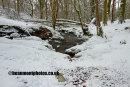 Snow Stone Marker