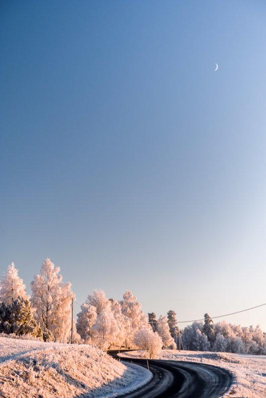 Frozen Moon