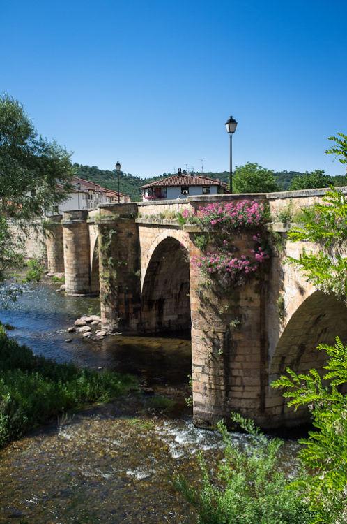 Bridge over the River