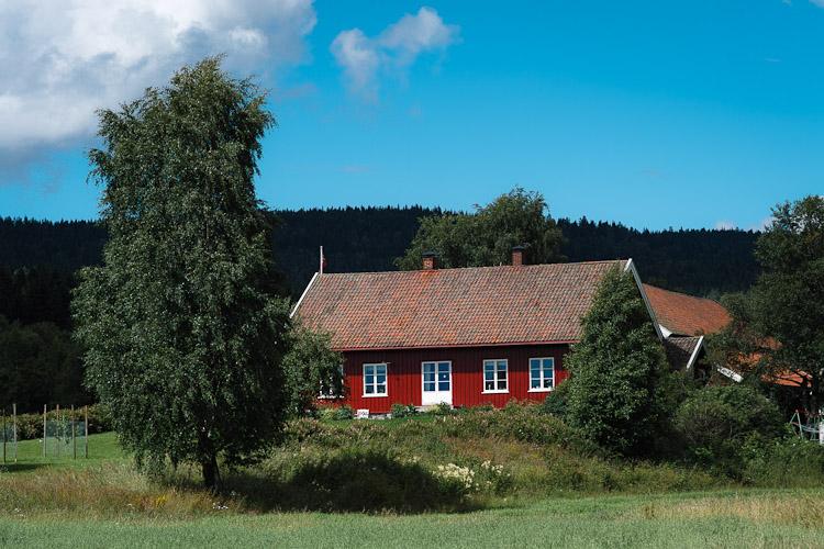 Farm behind the Church