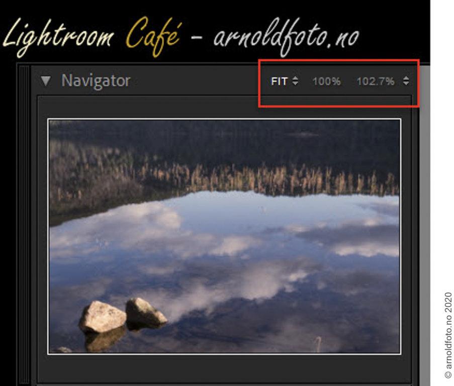 Lightroom Classic 10 - Navigator Zoom