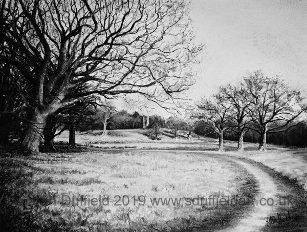 Charcoal drawing by Sussex artist Sarah Duffield of the ruins at Knepp estate. A large bare tree in the foreground and a track lead to and frame the ruins.