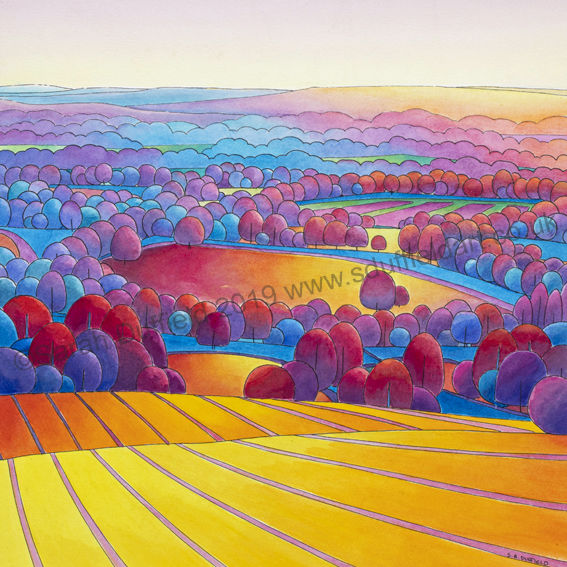 Abstracted Pen and Wash landscape by Sarah Duffield. Gentle sunset from a high vantage point, looking down across golden fields lined with purple/red and blue trees.