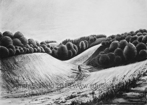 A deep valley in Arundel park cuts through hills with clumps of trees. Sunlight streams in between the trees and leaves the trees in deep shadow. A figure walks along the valley floor.