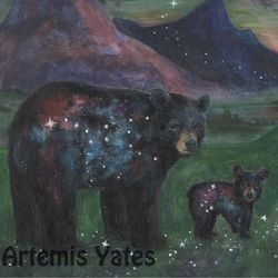 Constellations of Bears