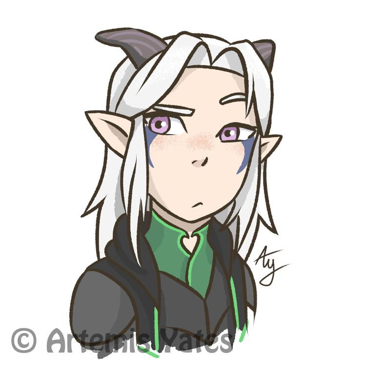 The Dragon Prince Daily - Day Three - Confused Rayla