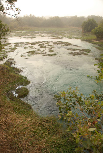 The Confluence of the Gaji river and Wikk Warm spring at Yankari Game Reserve