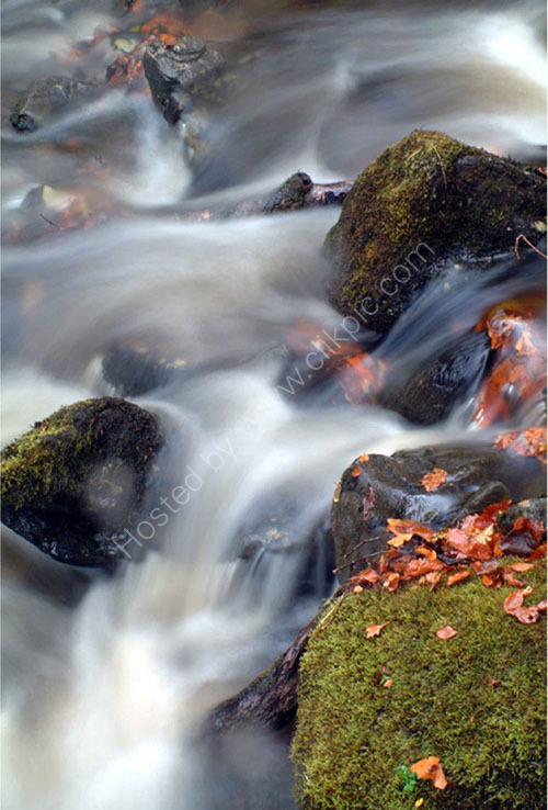 Autum river flow