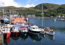 Mallaig harbour sunny day
