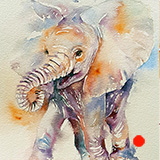 Elephant_Baby_Happy_Holly