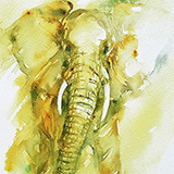 Elephant _Green Haze