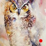 Glenn_the Owl