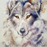 Grey Wolf Gregory
