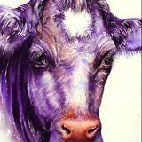 Moon Moon the Cow