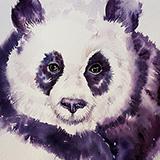 Lola the Panda