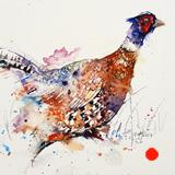 Pheasant _Patrick