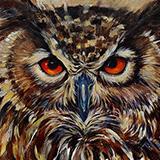 Shaggy Shawn_Owl