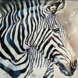 Xander the Zebra