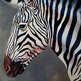Ken the Zebra