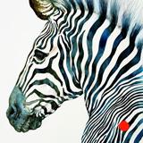 Midnight Blue Zebra