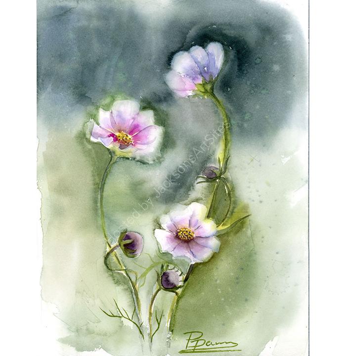 173.-Cosmos-flower