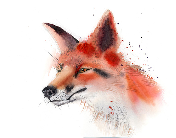Fox-art-print-watercolor-by-PaintisPassion